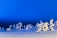 Rise of the snow golems